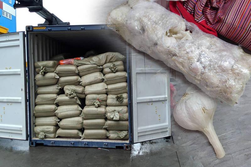 蒜價驚驚漲,財政部關務署基隆關查獲8000公斤中國蒜頭走私案。(本報合成)