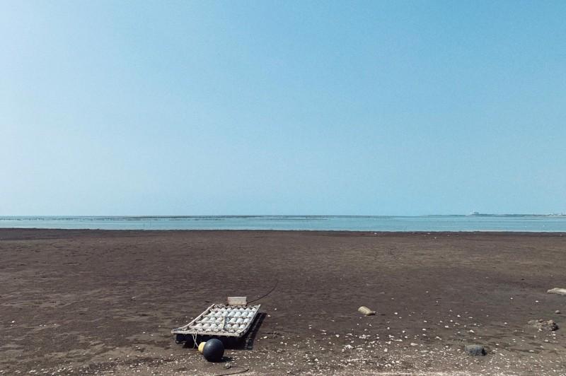新竹市擬在海山漁港設置太陽能光電板,但有環團憂心候鳥黑面琵鷺的棲息地會受干擾。(記者洪美秀翻攝)