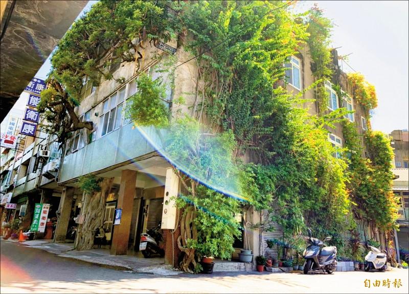 彰化市一棟透天厝依榕樹生長軌跡興建,形成粗大樹幹穿越廁所的奇景。(記者湯世名攝)