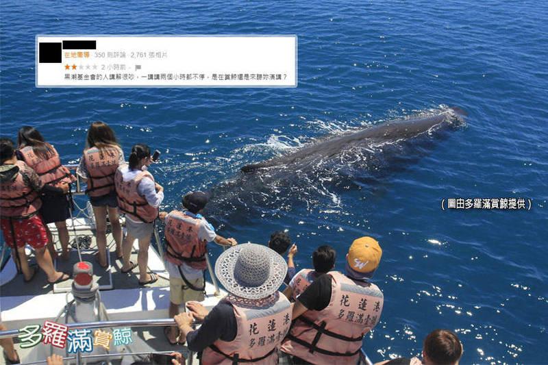 有遊客在多羅滿賞鯨的Google評論上刷2星負評,嫌黑潮海洋文教基金會的解說員很吵。對此,多羅滿賞鯨公司發聲明,請這位遊客另請高就。(上圖擷取自Google評論,底圖由多羅滿提供;本報合成)
