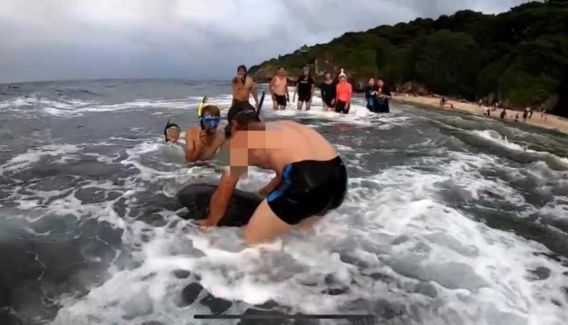 刺青男抓海龜的行為全被正義姐拍下(記者葉永騫翻攝)
