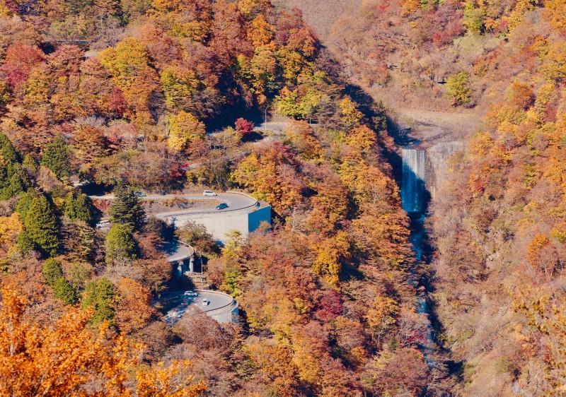 日本民調顯示,栃木縣被評為日本最沒魅力的縣市。圖為該縣日光市去年秋天的楓紅景致。(法新社)