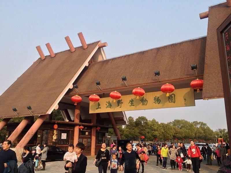 中國上海野生動物園昨日發生動物意外傷人事件,1名飼養員在猛獸區工作時遭到熊攻擊,不幸慘遭撕咬致死。(圖擷取自網路)