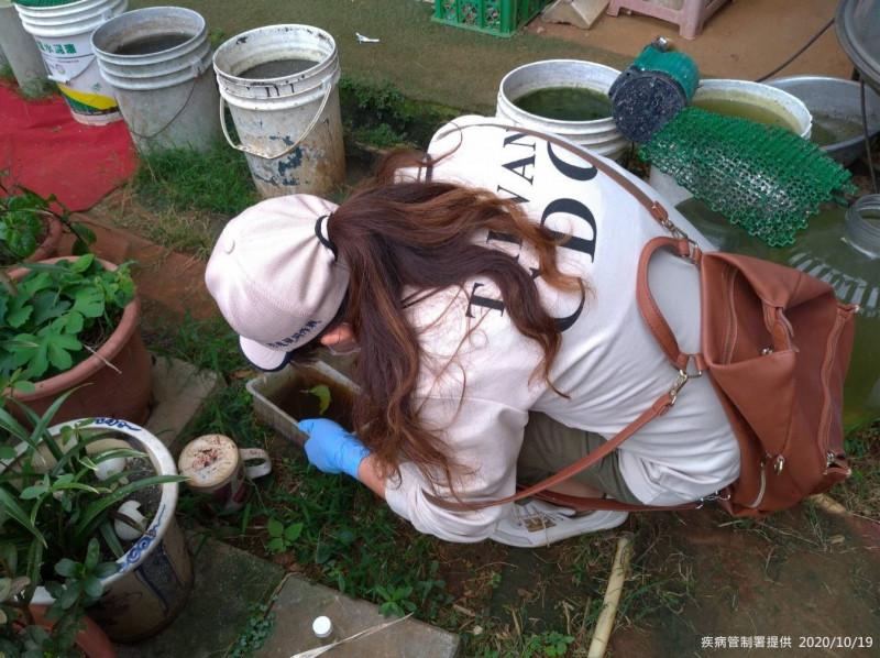 衛福部疾管署防疫人員於林口區本土登革熱個案活動地周邊查核孳生源。(疾管署提供)
