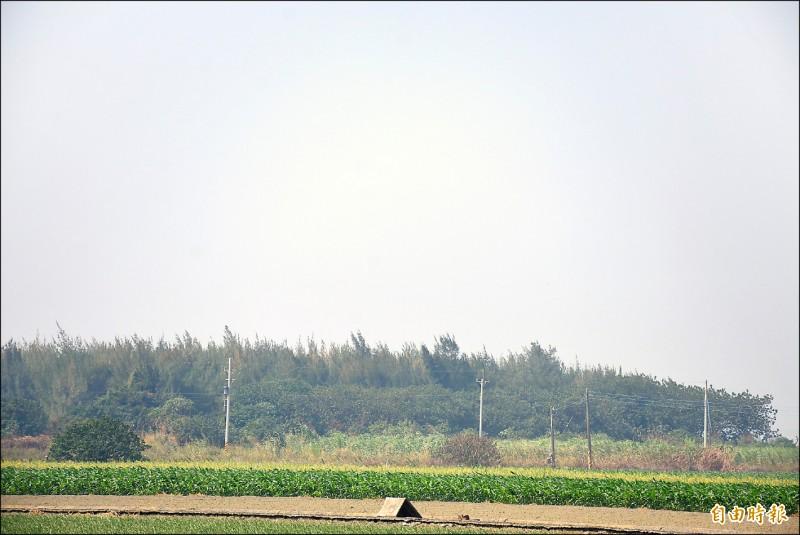 雲林沿海地區一片白茫茫,空氣中有股焦味。 (記者林國賢攝)