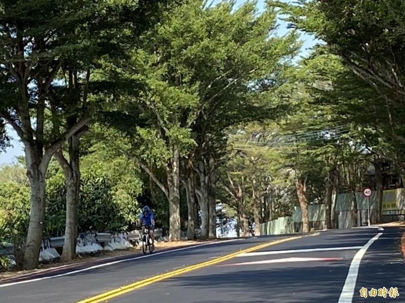 彰化縣139線縣道蜿蜒在八卦山稜線,沿途有不少綠色隧道,是車友享受踩踏樂趣的熱門路段。(記者張聰秋攝)