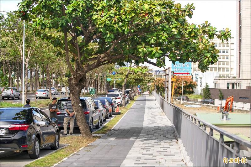 竹市公道五路變身綠蔭走廊。(記者蔡彰盛攝)