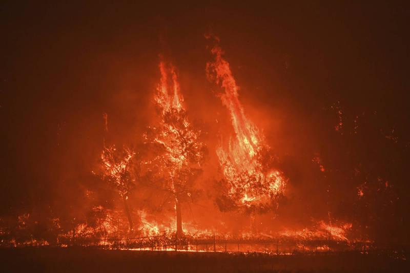 一名父親帶著兩名兒子出遊露營,不料卻在半夜遭遇火災,父親衝進火場抓了兩條手就往外跑,到外面才發現兩手抓的是大兒子的手腳,而想再返回火場時火勢已經太過猛烈,另一名兒子因此葬身火窟。示意圖。(美聯社)