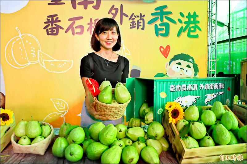 台南芭樂近3年外銷香港成績都不錯,今年迄今已外銷708公噸。(記者萬于甄攝)