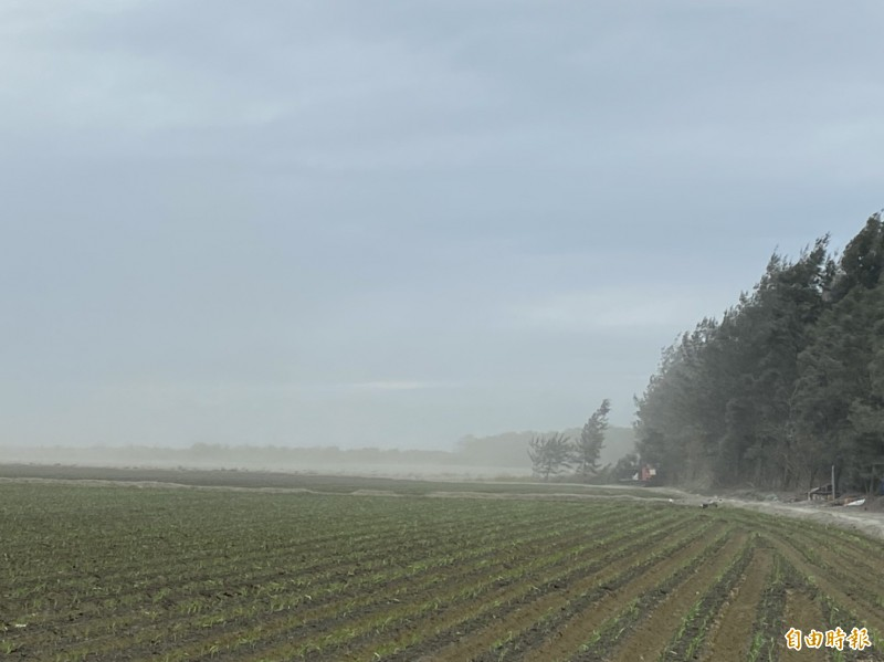 東北季風起,濁水溪河床裸露地區被帶起的揚塵驚人。(記者詹士弘攝)