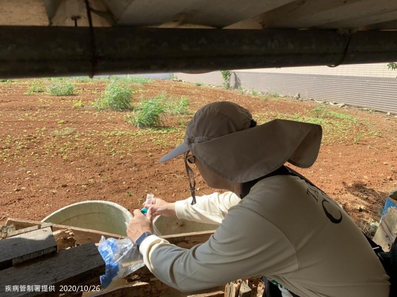 衛福部疾管署防疫人員至新北市林口區麗林里本土登革熱個案活動地周邊查核孳生源。(疾管署提供)