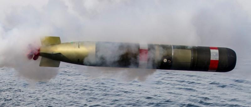 錘頭鯊水雷的攻擊模,預定採用雷神公司製造的Mk54鯖鯊(MAKO)輕型魚雷,(圖/雷神公司官網)