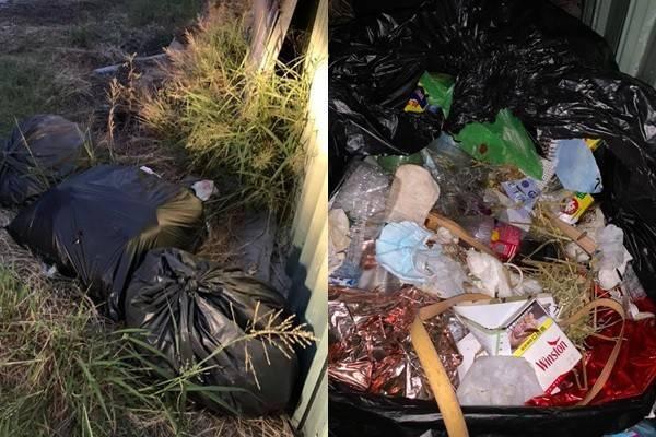 台中一名網友在家附近發現三大包垃圾被隨意丟棄,不但飄出寵物排泄物惡臭,黑色垃圾袋中廚餘還爬滿了蛆,氣憤的他不怕髒,翻出薪資袋與藥袋,透過不多的線索找到亂丟垃圾的兇手。(圖擷取自臉書「爆廢1公社」)