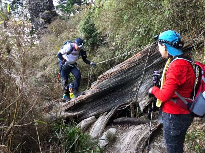 今年攀登北大武山的人潮明顯增加。(圖由葉姓山友提供)