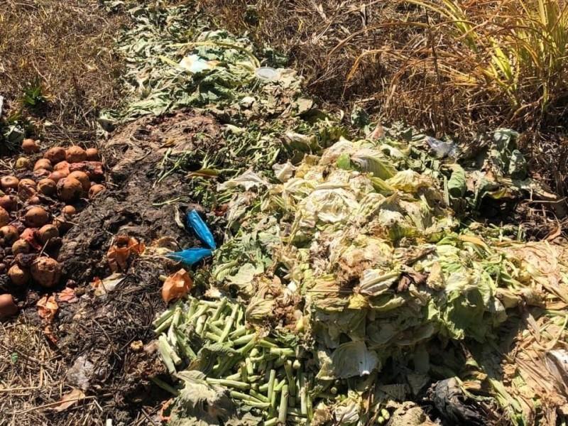 餐飲業者將菜葉等廢棄物丟棄在私人土地上,衍生髒亂等問題。(記者歐素美翻攝)