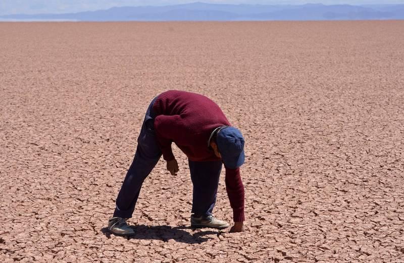 WMO預測,南美洲北部的降雨將比平常多,南部大部分地區可能出現低於正常的降雨量。圖為玻利維亞的波波湖。(歐新社)