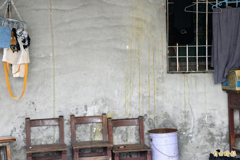 兇嫌梁男家後門的牆壁,一早被丟雞蛋而留下蛋痕。(記者許麗娟攝)