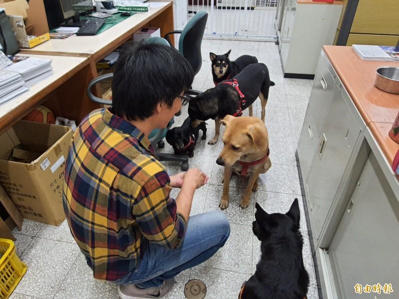 新竹女中國文老師王智忠,以筆名吳可名獲得今年林榮三文學獎新詩類第二名,他說要把獎金作為校內他養的流浪犬貓的飼料費用。(記者洪美秀攝)