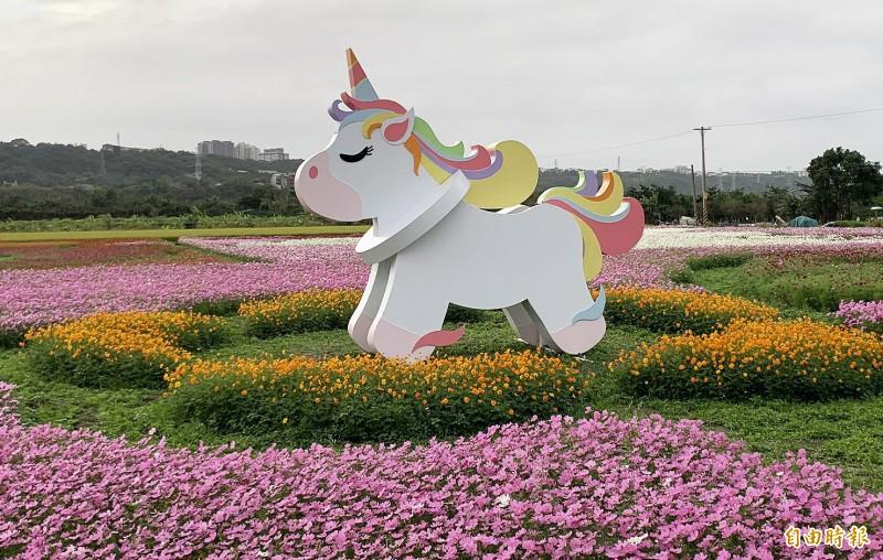 桃園花彩節大溪場最吸睛的「夢幻獨角獸」,駐足於美麗的波斯菊花海中。(記者李容萍攝)