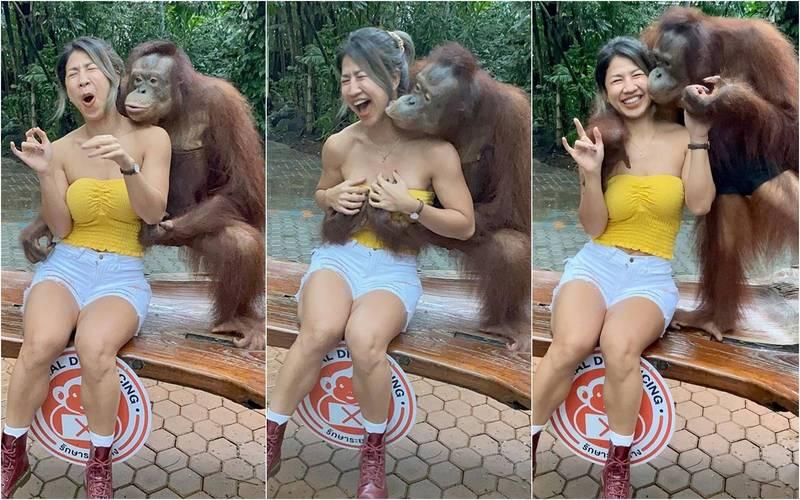 泰國健身網紅Oummy慘遭紅毛猩猩「性騷擾」。(圖擷自IG)