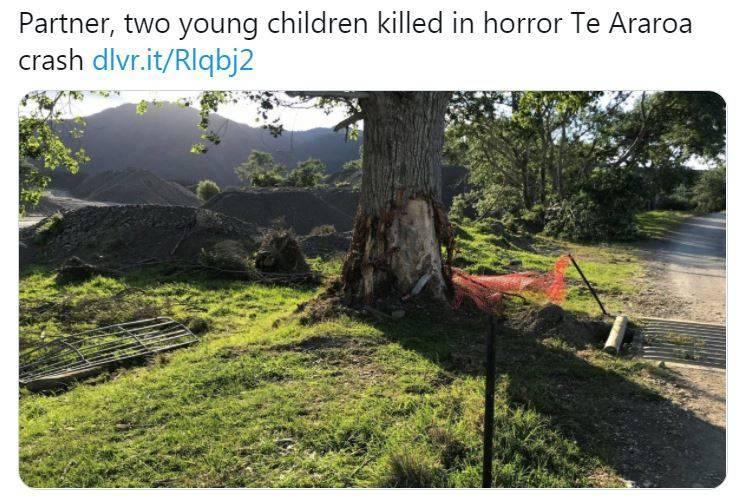 紐西蘭一家4口先後撞上同一棵樹死亡。(圖擷取自推特)