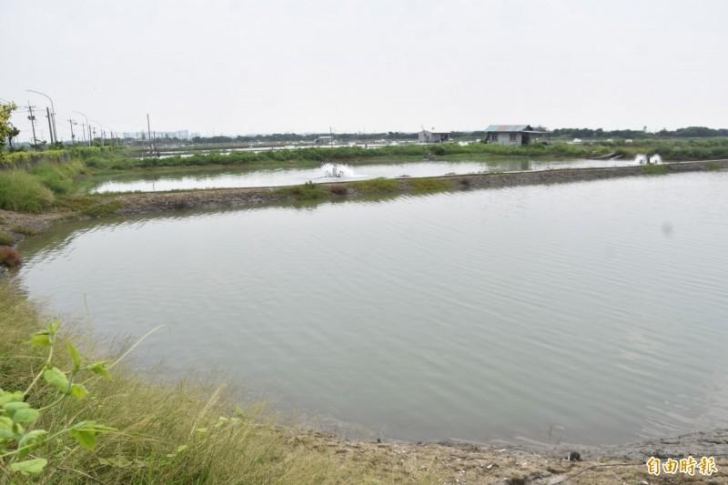 漁業署規劃高雄彌陀沿海622公頃魚塭,為推動漁電共生先行區,鼓勵養殖業者設置太陽能光電板。(記者蘇福男攝)
