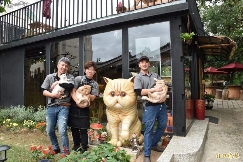 原本的豬圈改建完成後成為「游家肥貓」的動物友善空間。(記者李容萍攝)