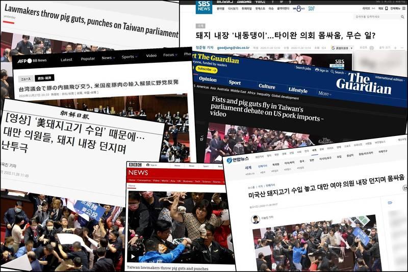 立法院昨日上演「豬腸飛竄」,引起各國媒體爭相報導。(圖擷自SBS、BBC、衛報、朝鮮日報、韓聯社、美聯社等媒體網站,本報合成)