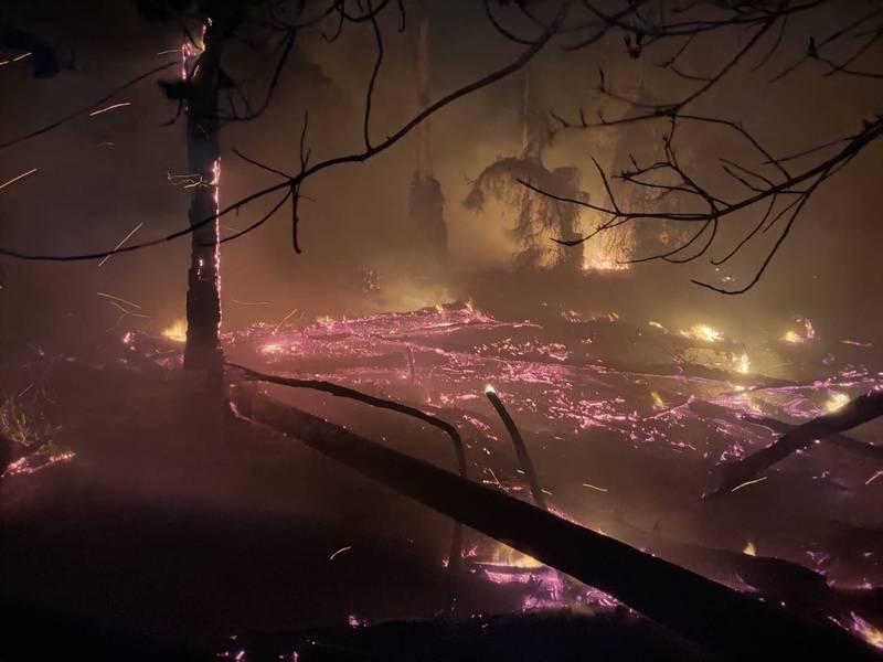 金門畜試所晚間發生火警,現場多是乾燥林木,在風勢助長下,火勢延燒500平方公尺。(民眾提供)