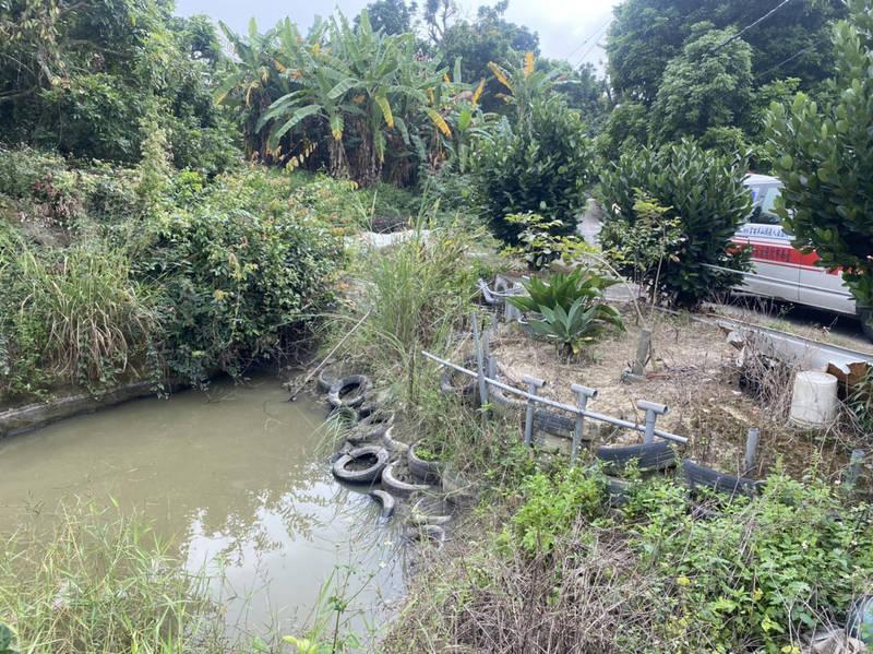 只穿內褲的39歲吳姓男子在水深僅約80公分的水塘溺水昏迷。(記者楊金城翻攝)
