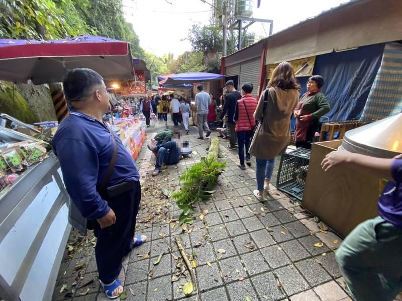 苗栗縣泰安鄉清安豆腐街今天下午發生斷裂樹幹砸傷一對遊客父子的意外,傷者40歲柯姓男子、7歲柯姓男童經送醫診治,都有顱內出血情形,目前在加護病房急救。(圖由民眾提供)