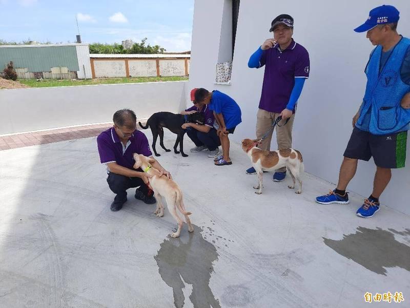 澎湖縣新建流浪犬之家,專人照料流浪犬。(記者劉禹慶攝)