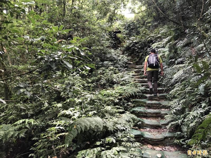 北大武山之美吸引登山客。(資料照,記者羅欣貞攝)