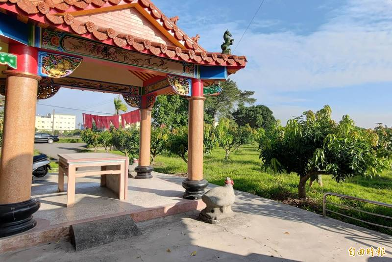 石鵝湖福德寺前方是青農陳正杰祖先耕種百年的土地,卻被廟方提告應返還土地。((記者陳冠備攝)