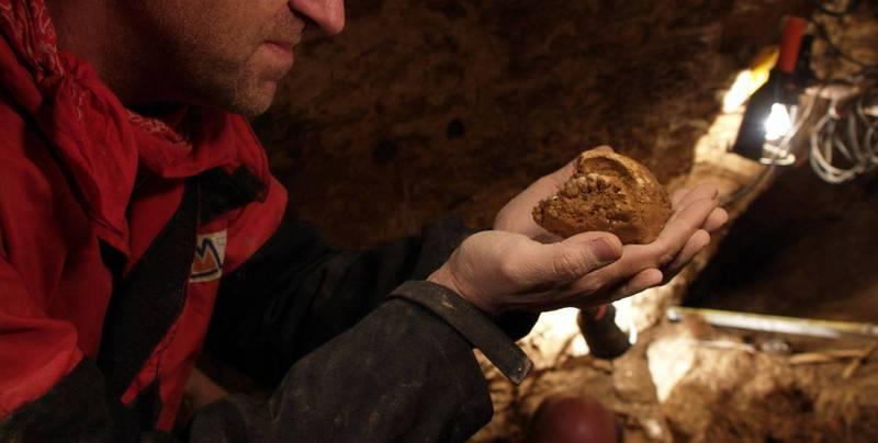 西班牙、希腊学者发现,古代人类可能冬眠。图为Sima de los Huesos出土骨骸。(路透档案照)(photo:LTN)