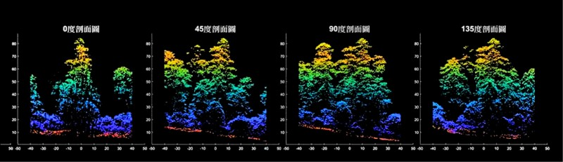桃山神木的3D光達點雲圖。(林試所提供)