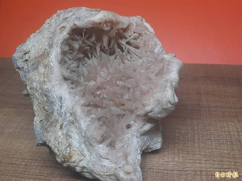 澎湖自然資產豐富,澎南海域岩壁發現的方解石根痕化石。(記者劉禹慶攝)