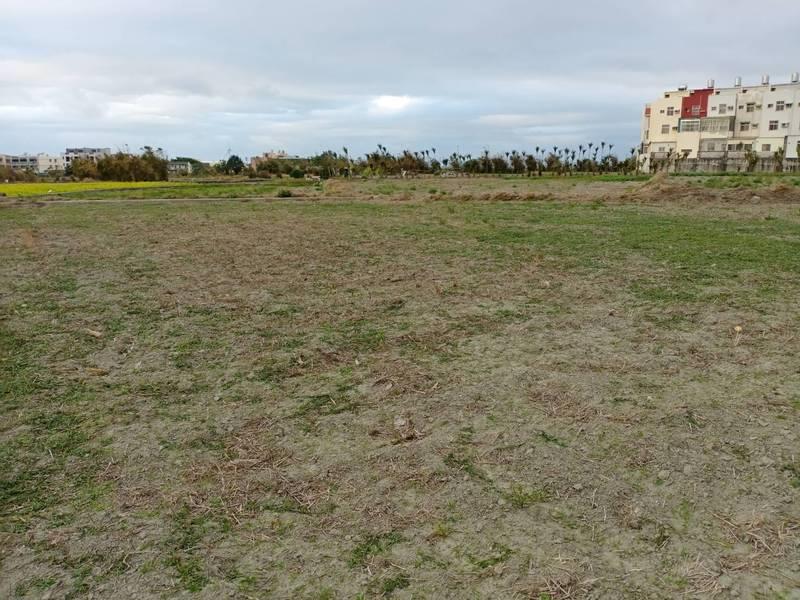 水情嚴峻,台中17區約1.7萬公頃農地一期稻作停灌。(台中市農業局提供)