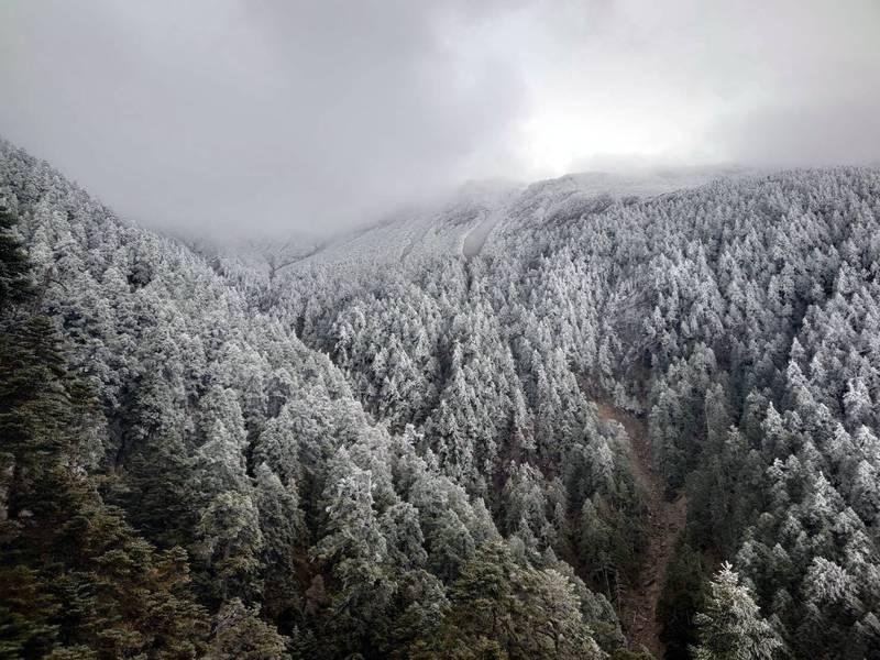 玉山國家公園氣溫不斷下探,導致群峰出現結冰及霧淞奇景。(玉管處提供)