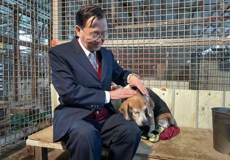 81歲資深國寶級主播盛竹如與動保團體「台灣動物緊急救援小組」合作,南下流浪貓狗收容園區拍攝公益宣傳短片。(台灣動物緊急救援小組提供)