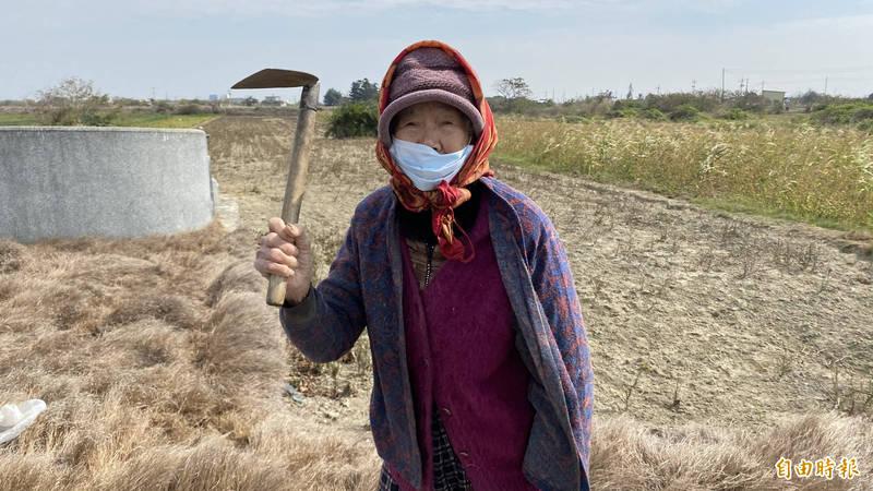 北門阿嬤農婦楊止拿下田用的小鏟子當保命工具護身,防止野狗攻擊。(記者楊金城攝)
