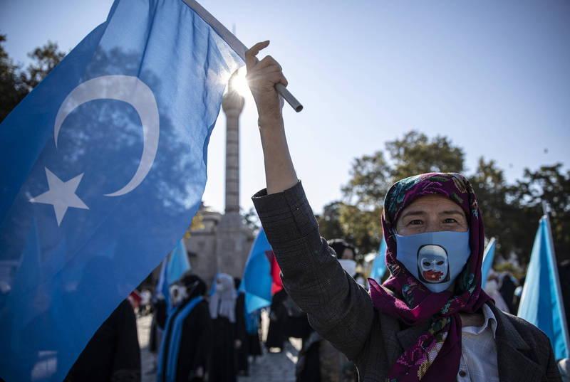 新疆傳出維吾爾人被迫養豬、吃豬肉,嚴重污辱穆斯林。(歐新社)