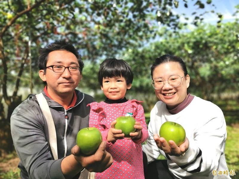 科技新貴返鄉務農 蜜棗大如青蘋果獲好評