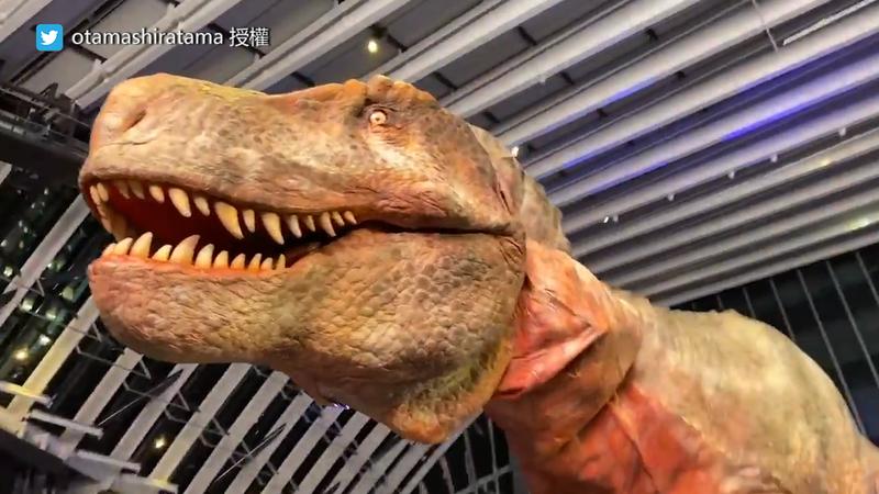 《侏儸紀公園》真恐龍不是傳說?逼真走動網笑:「恐龍還沒滅絕啦」