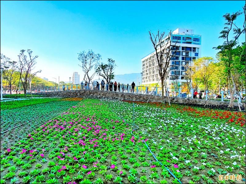 左營綠園道營造繽紛美麗環境,將於農曆春節前開放民眾走春。(記者陳文嬋攝)