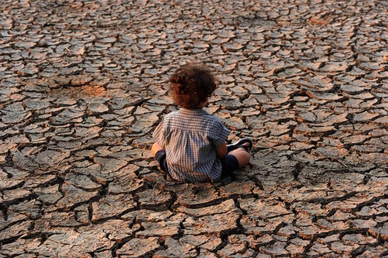 日益顯著的氣候變遷與生物持續滅絕為全球生態敲響警鐘。(法新社)