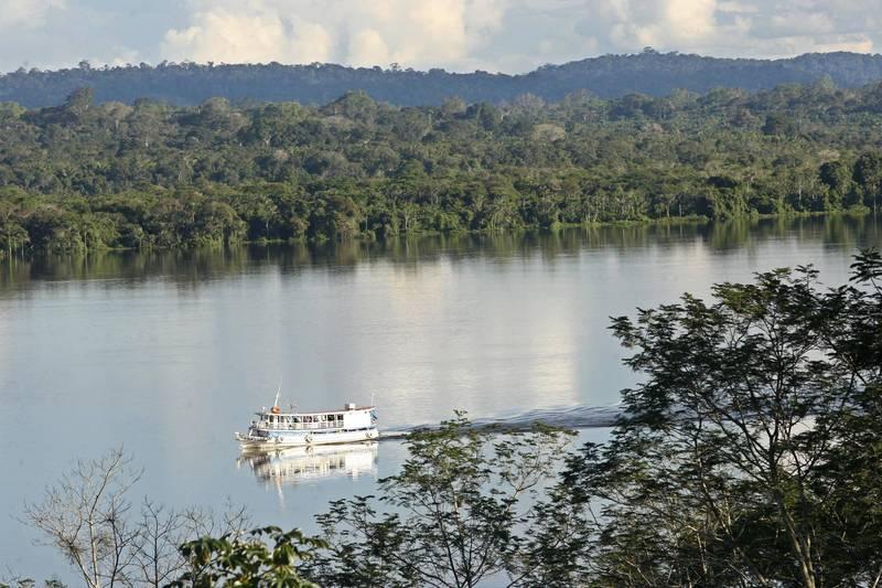 巴西研究員證實,赴日旅客發現的新變種病毒是全新的變種,源自於亞馬遜雨林,已經當地傳播。(美聯社)