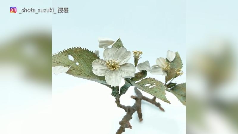 細緻的自然紋路,很難想像這是金屬製成。(圖片由Instagram帳號Shota Suzuki授權提供使用)
