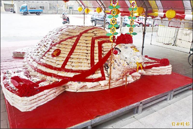 澎湖縣湖西鄉龍門村觀音宮「大米龜」,提前在過年前夕擺設完成。(記者劉禹慶攝)