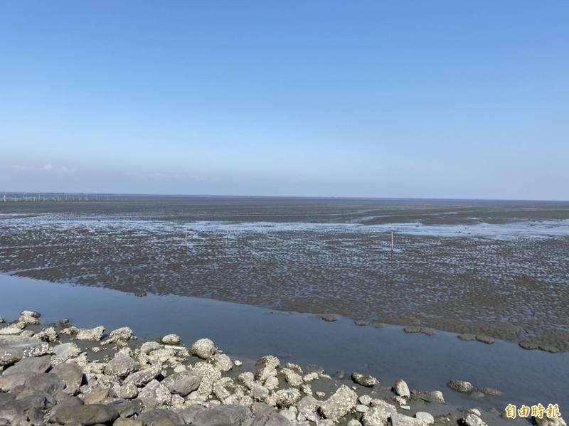 濁水溪出海口地貌環境、生態豐富,雲林縣擬打造生態人文品牌。(記者詹士弘攝)